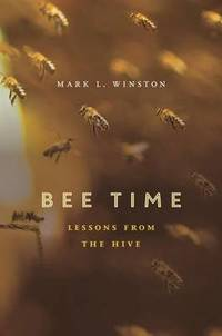 Bee Time: Lessons from the Hive