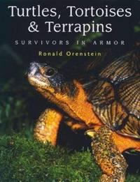 Turtles, Tortoises and Terrapins : Survivors in Armor