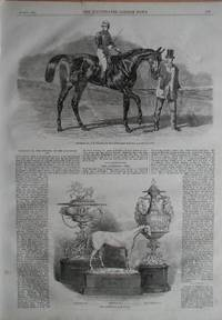 Horseracing: Sweetsauce, the Winner of the Stewards' and the Goodwood Cups; & The Goodwood Race Plate.