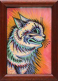 Kaleidoscope cat.