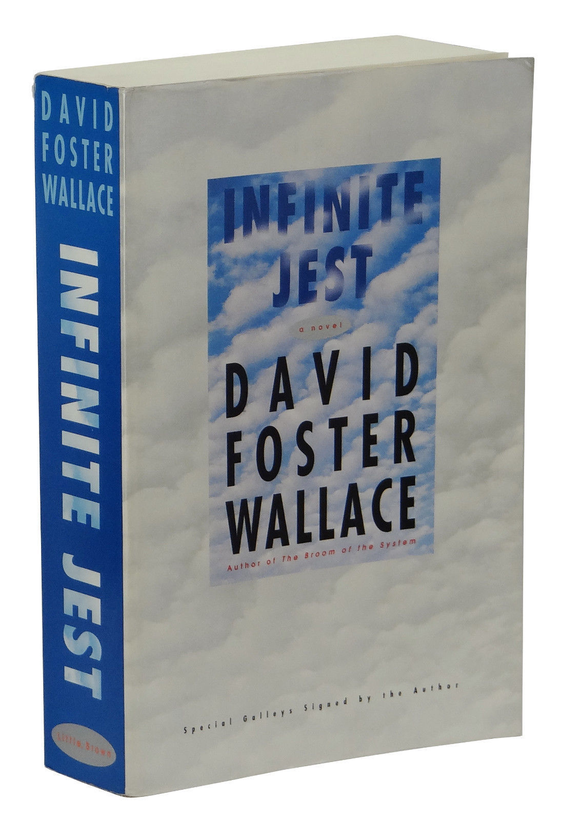 an analysis of infinite jest by david foster wallace And brief analysis of infinite jest by david foster wallace summary and brief analysis of infinite jest by david foster infinite flexibility of.