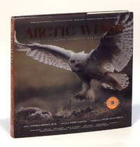 Arctic Wings (With CD)