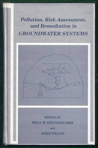 Pollution, Risk Assessment, and Remediation in Groundwater Systems