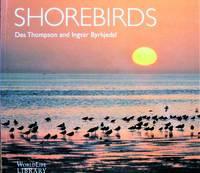 image of Shorebirds