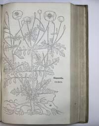 New Kreüterbuch by  Leonhard (1501-1566) FUCHS - 1543 - from Riverrun Books & Manuscripts (SKU: 401692)