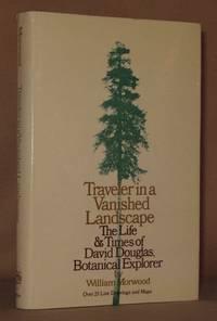 TRAVELER IN A VANISHED LANDSCAPE