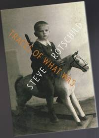 Traces of What Was:  The Azriele Series of Holocaust Survivor Memoirs;  Series 6