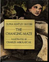 image of THE CHANGING MAZE