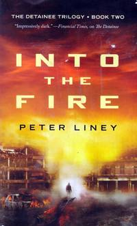 Into The Fire (The Detainee Series #2)