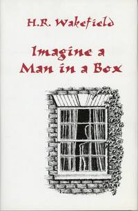 IMAGINE A MAN IN A BOX