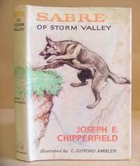 Sabre Of Storm Valley