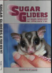 image of Sugar Gliders As Your Pet