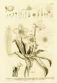 Icones plantarum et analyses partium...