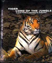 Tiger | Lord of the Jungle