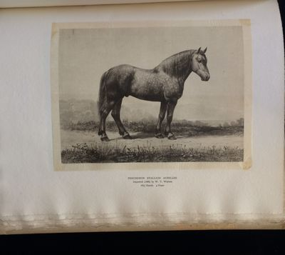 Baltimore: privately printed, 1886. 1st Edition. Hardcover. Very Good. Privately printed by W. T. Wa...