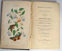 Blight on Flowers; or, Figures and Descriptions of the Insects infesting the Flower Garden; including various means for destroying those which by their depredations occasion many of the diseases of plants. Also copious directions for the successful management of all kinds of flowers, whether in the Hothouse, Greenhouse or Open Air