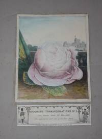 Spooner's Transformations No. 5 -- The Royal Rose of England The expectancy and rose of the fair State.  Shakespeare.