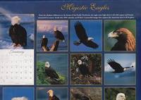 Majestic Eagles 1999 Calendar