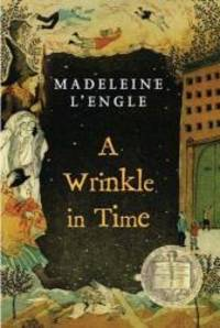 A Wrinkle In Time (Turtleback School & Library Binding Edition) (Madeleine L'Engle's Time...