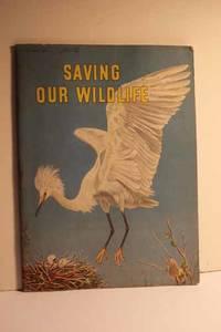 Saving Our Wildlife
