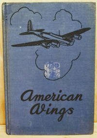American Wings:  Modern Aviation for Everyone
