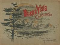 Buena Vista Improvement Co.