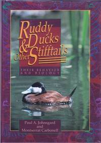 Ruddy Ducks & Other Stifftails: Their Behavior and Biology