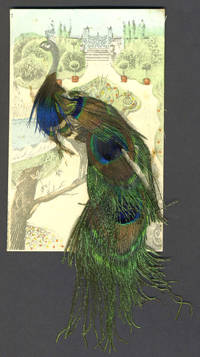 image of Peacock postcard decorated with real feathers