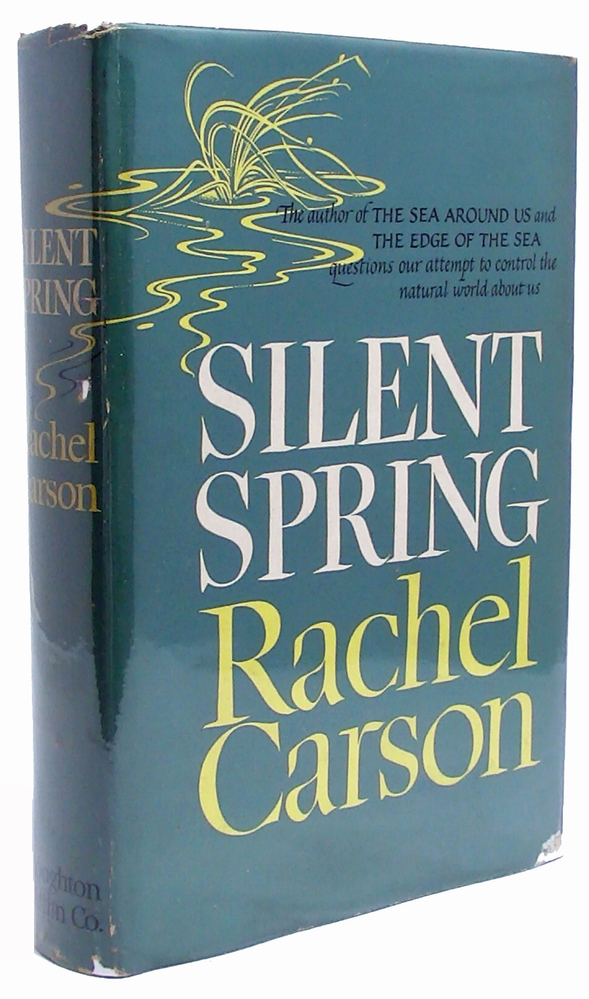 silent spring rachel carson 1 Buy silent spring (penguin modern classics) new ed by rachel carson,  shackleton (isbn: 9780141184944) from  turn on 1-click ordering for this  browser.