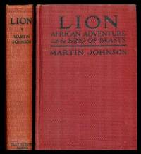 image of LION - African Adventure with the King of Beasts