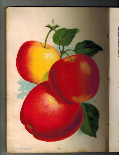 Rochester, New York: Chase Brothers Company , 1902. With 47 glorious color lithographs by Stecher Li...