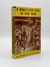 image of A Mole's-Eye View of New York