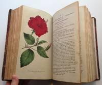 The Botanical Magazine; or, Flower-Garden Displayed