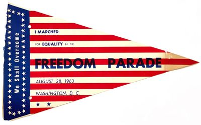 We Shall Overcome. I Marched for...