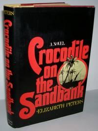 image of Crocodile on the Sandbank