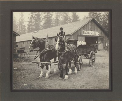 Very Good. Mounted silver gel print depicts a P. Burns & Company horse-drawn wagon in front of a rac...