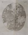 View Image 6 of 6 for THE THEORY OF THE EARTH: Containing an Account of the Original of the Earth, and of all the General ... Inventory #019728
