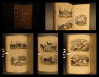 Domesticated Animals, popularly considered by  Robert MUDIE - First - 1870 - from Schilb Antiquarian Rare Books and Biblio.com