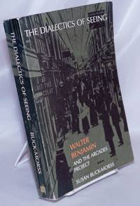 image of The Dialectics of Seeing: Walter Benjamin and the Arcades Project