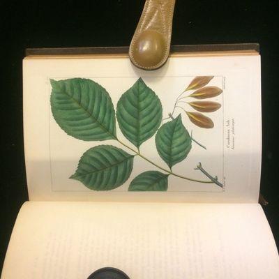 Philadelphia: Rice, Rutter, 1865. 1st Edition Thus. Hardcover. Near Fine. Three volumes of the 1865 ...