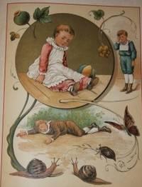 Barbichon Le Roi des Caniches Illustre de Huit Magnifiques Chromos