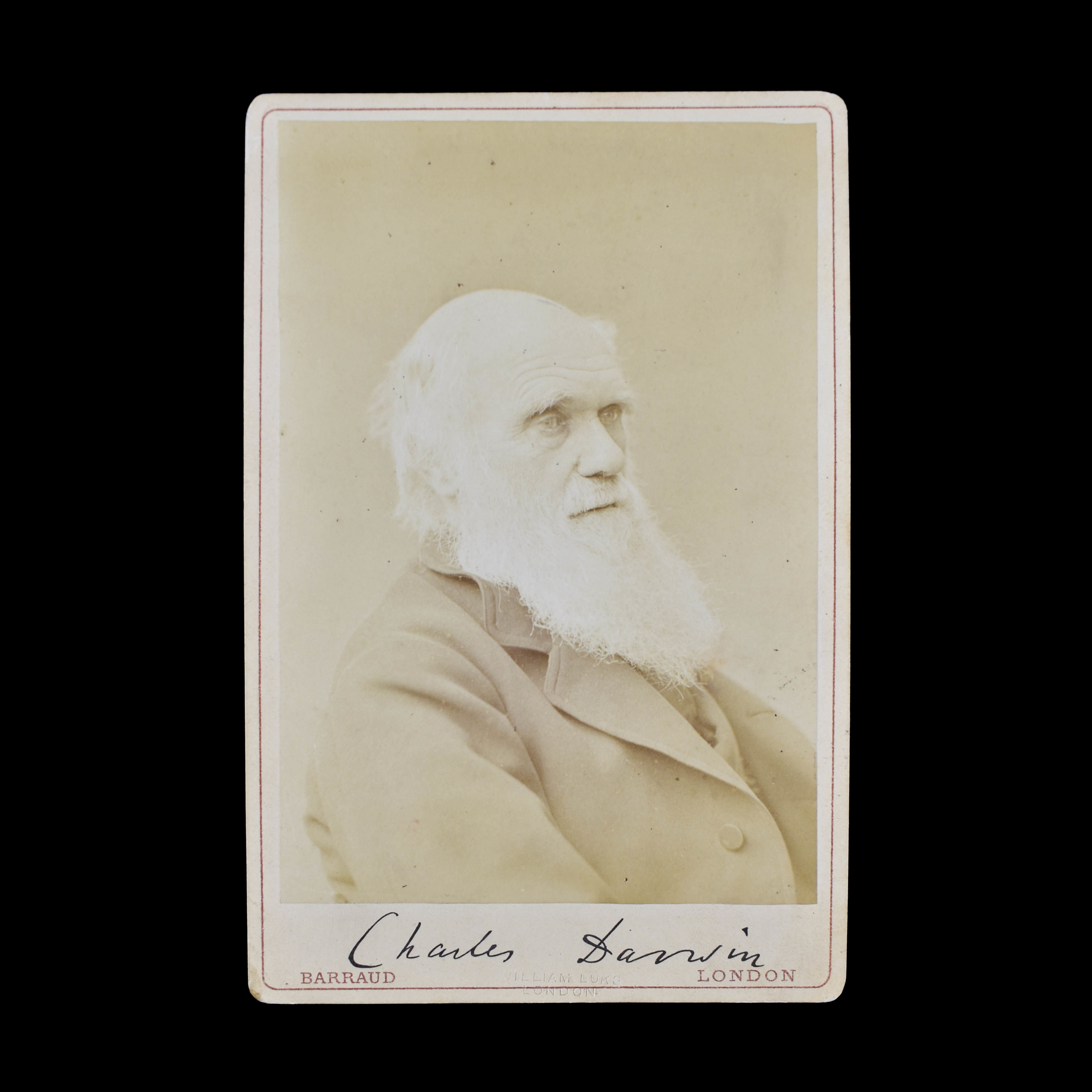 COLLECTION OF DARWIN & HUXLEY  PHOTOGRAPHS (photo 2)