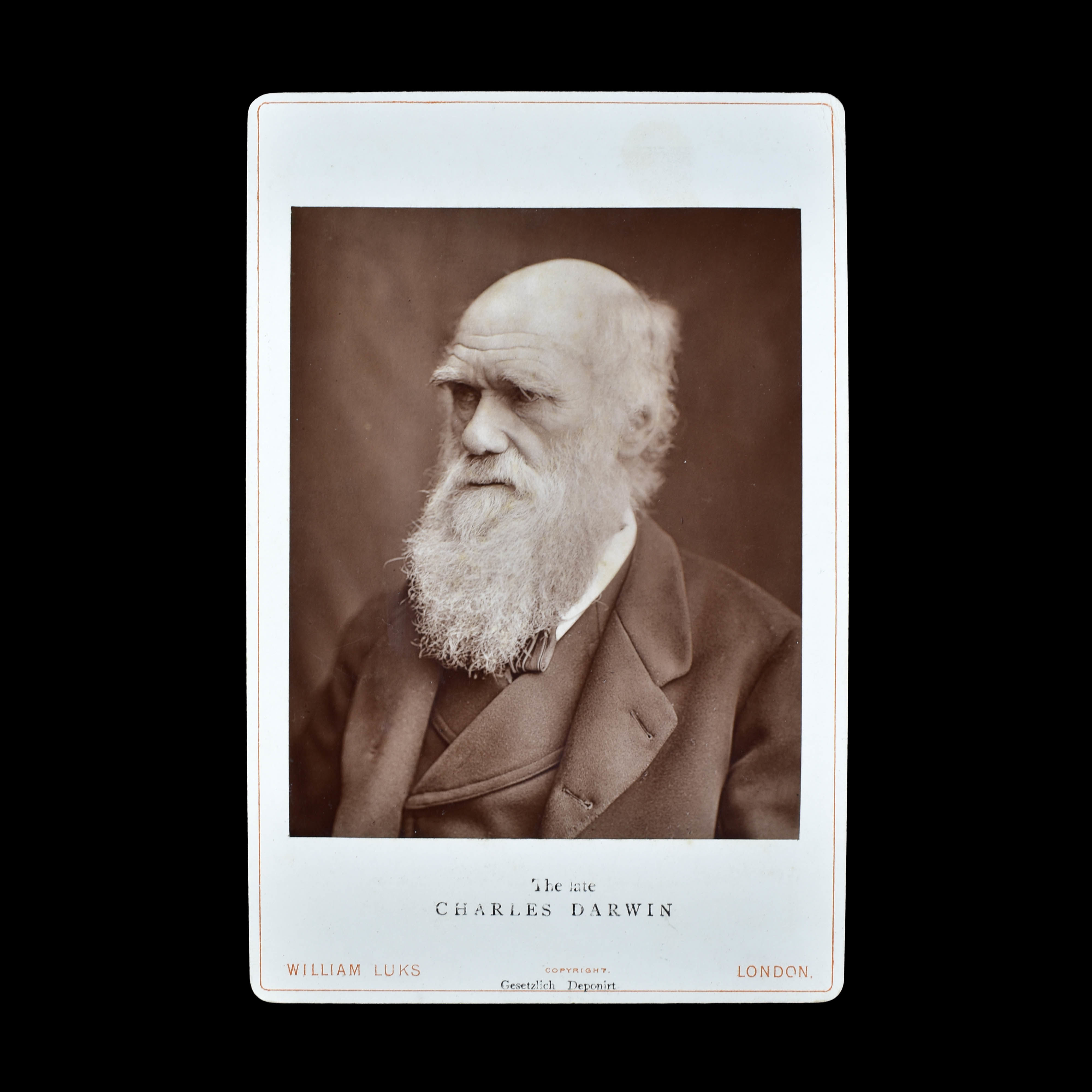 COLLECTION OF DARWIN & HUXLEY  PHOTOGRAPHS (photo 3)