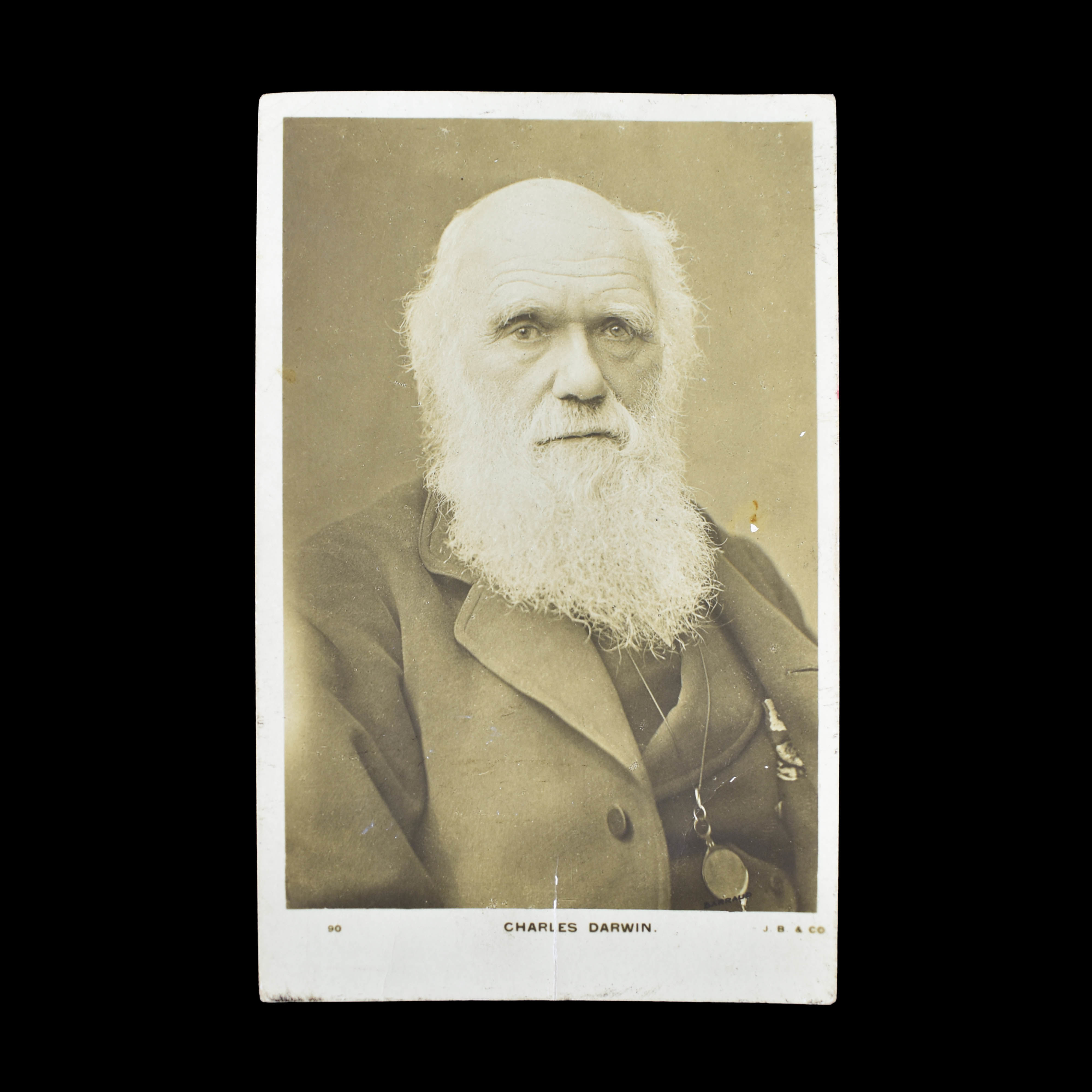 COLLECTION OF DARWIN & HUXLEY  PHOTOGRAPHS (photo 4)