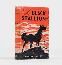 image of The Black Stallion.