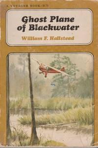 Ghost Plane of Blackwater