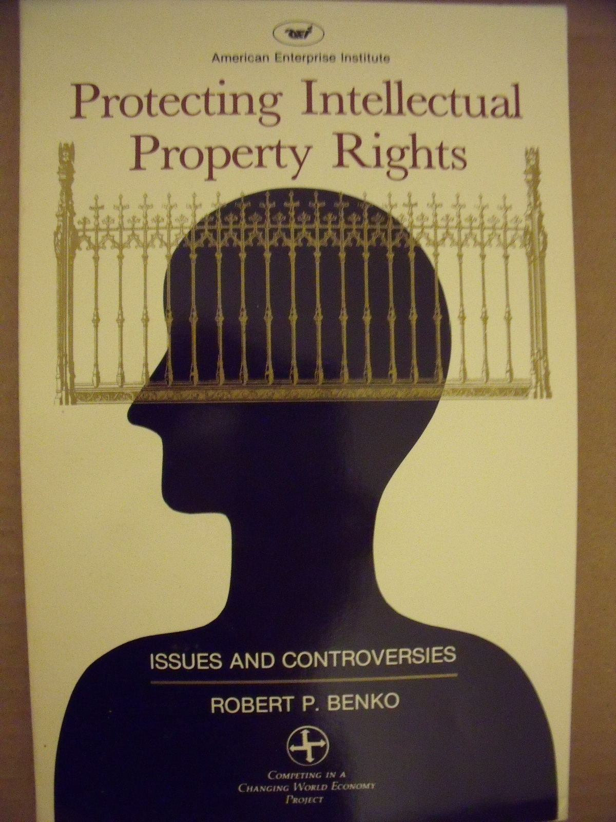 essay on protecting intellectual property rights