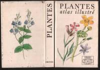 Plantes -atlas illustré