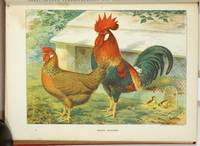 Wright's Book of Poultry. Revised and Edited in Accordance with the Latest Poultry Club Standards.