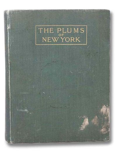 J.B. Lyon Company, 1910. First Edition. Large Hardcover. Good/No Jacket. Boards rubbed and smudged, ...